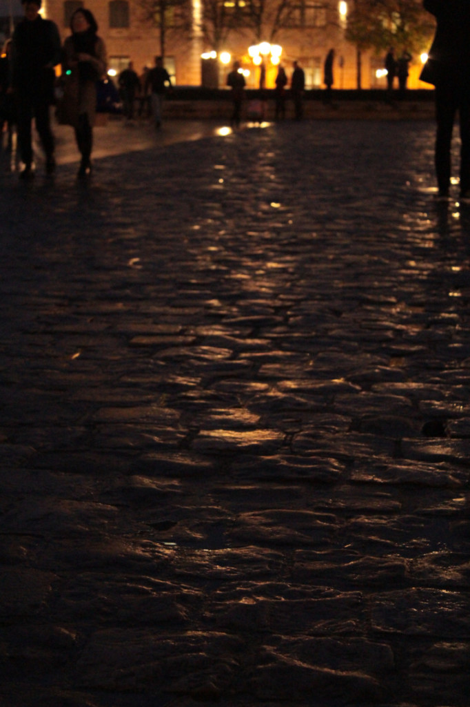 Wet cobbles outside Notre Dame at night