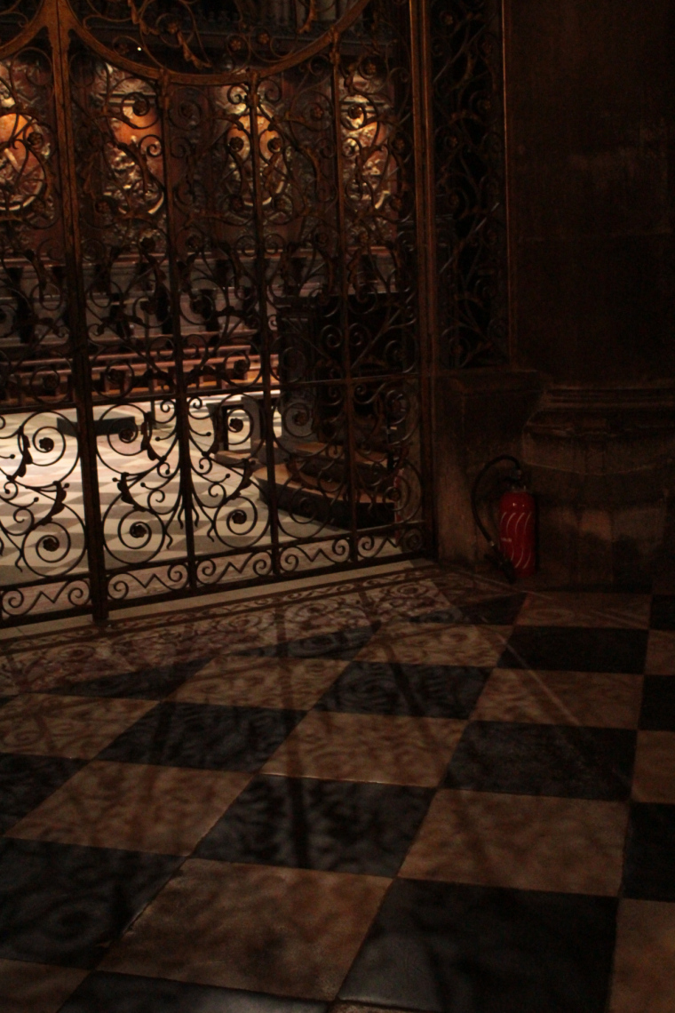 Gates in Notre Dame casting beautiful shadows