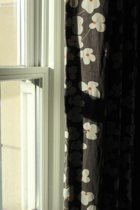 Thick curtains with daisies on them - perfect