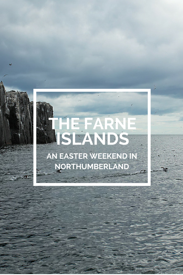 The Farne Islands Northumberland