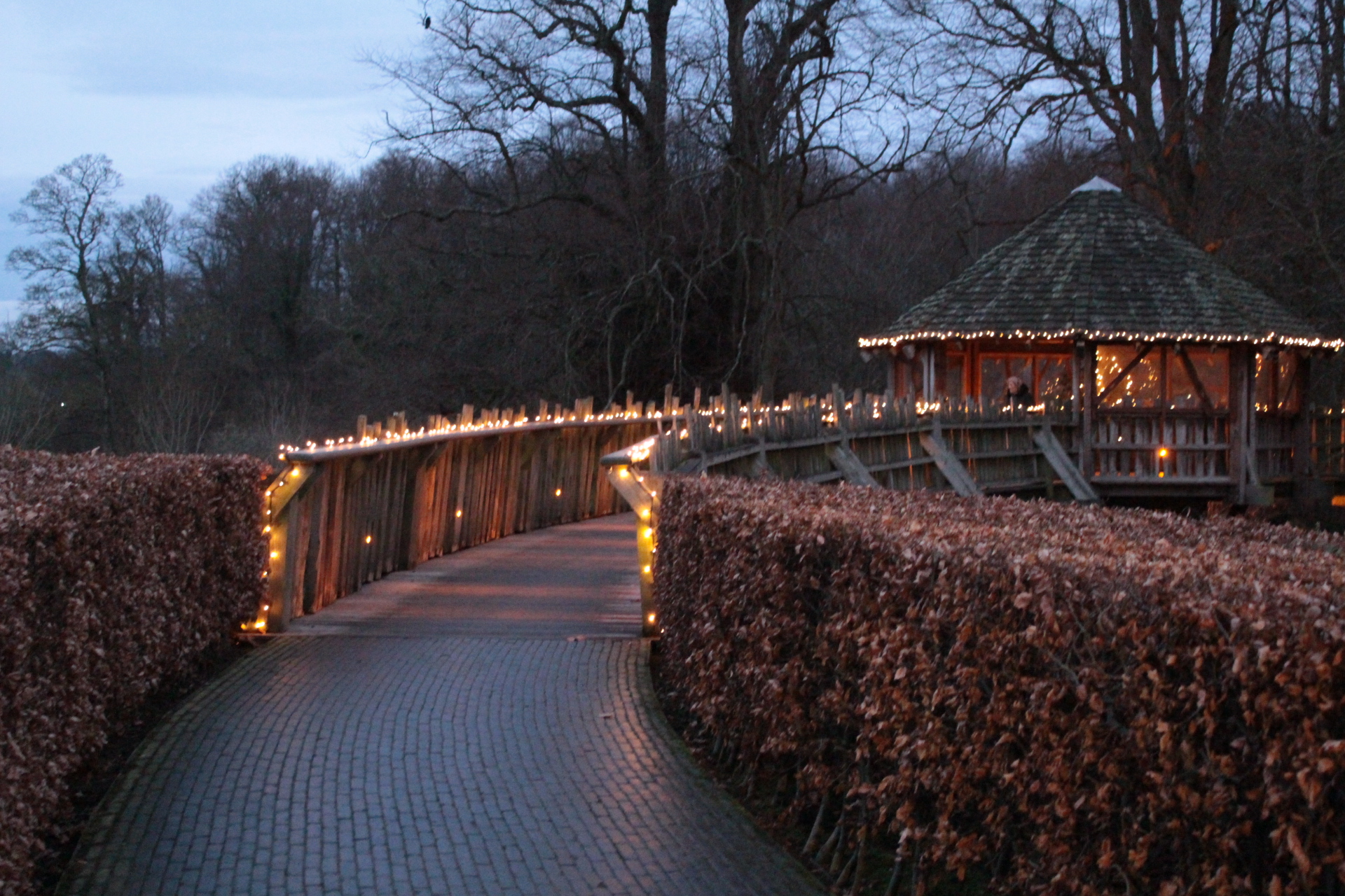 Alnwick Gardens Treehouse at night