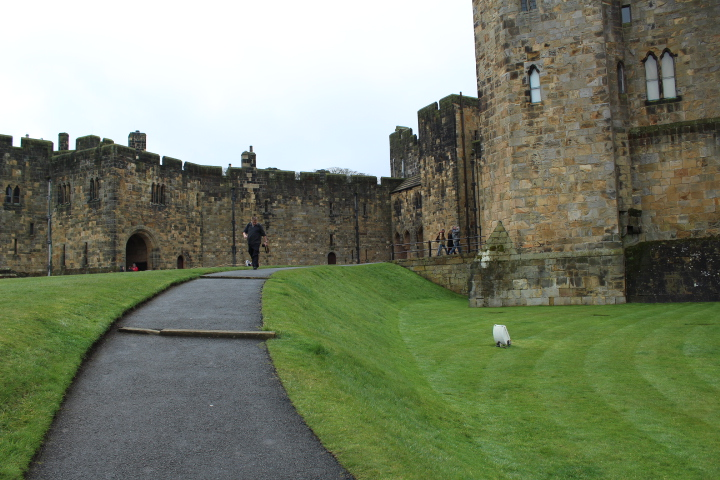 Alnwick Castle inside the grounds