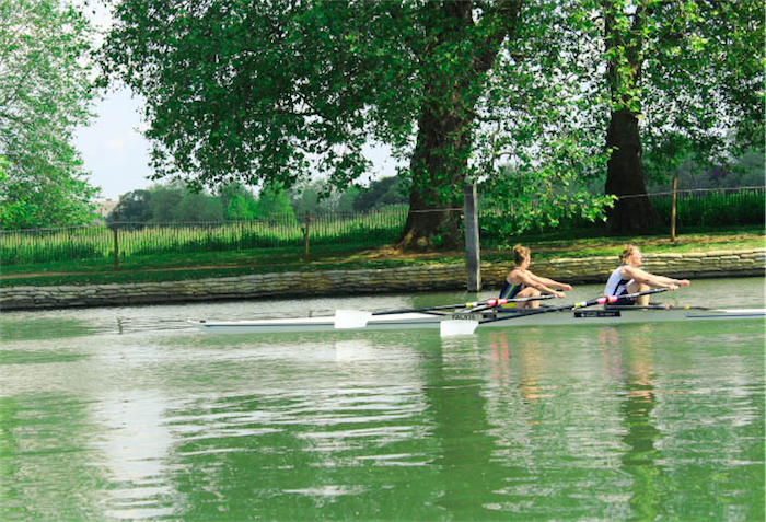 Rowers on river thames