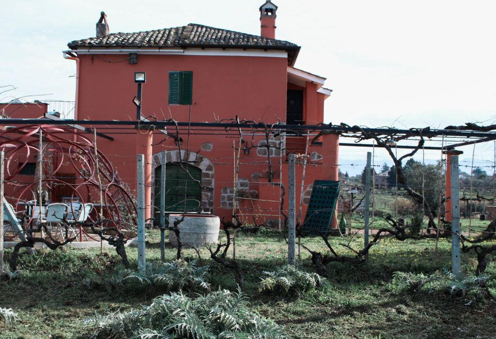 Cantina del Tufaio winery in Lazio
