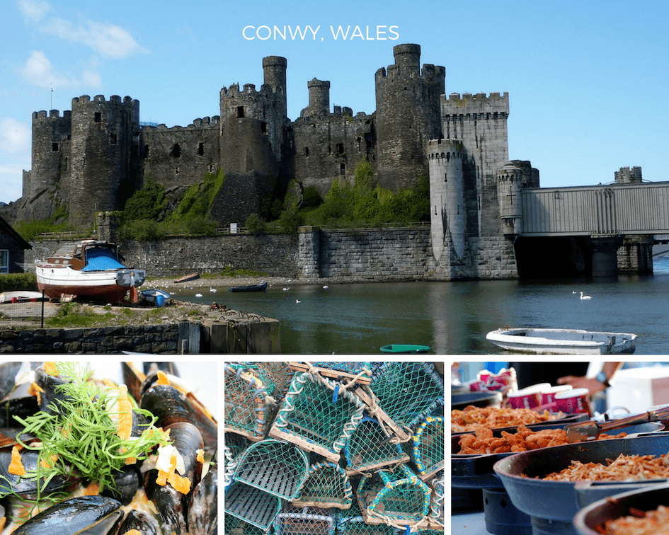 Conwy Food festival images