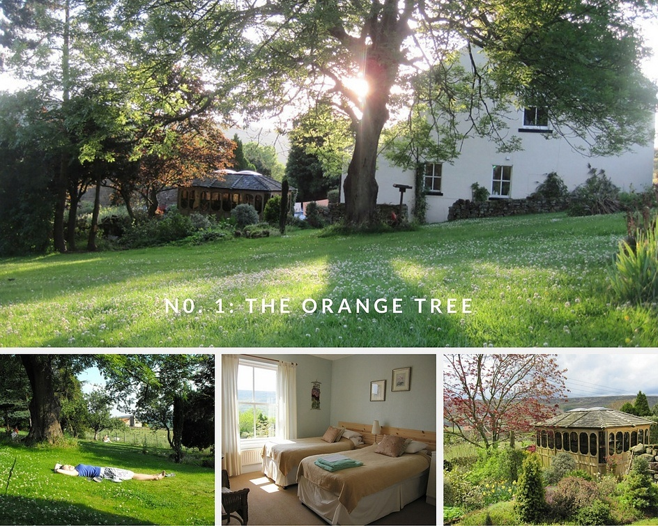 Yoga-retreat-orange-tree-on-a-detox-retreat-uk