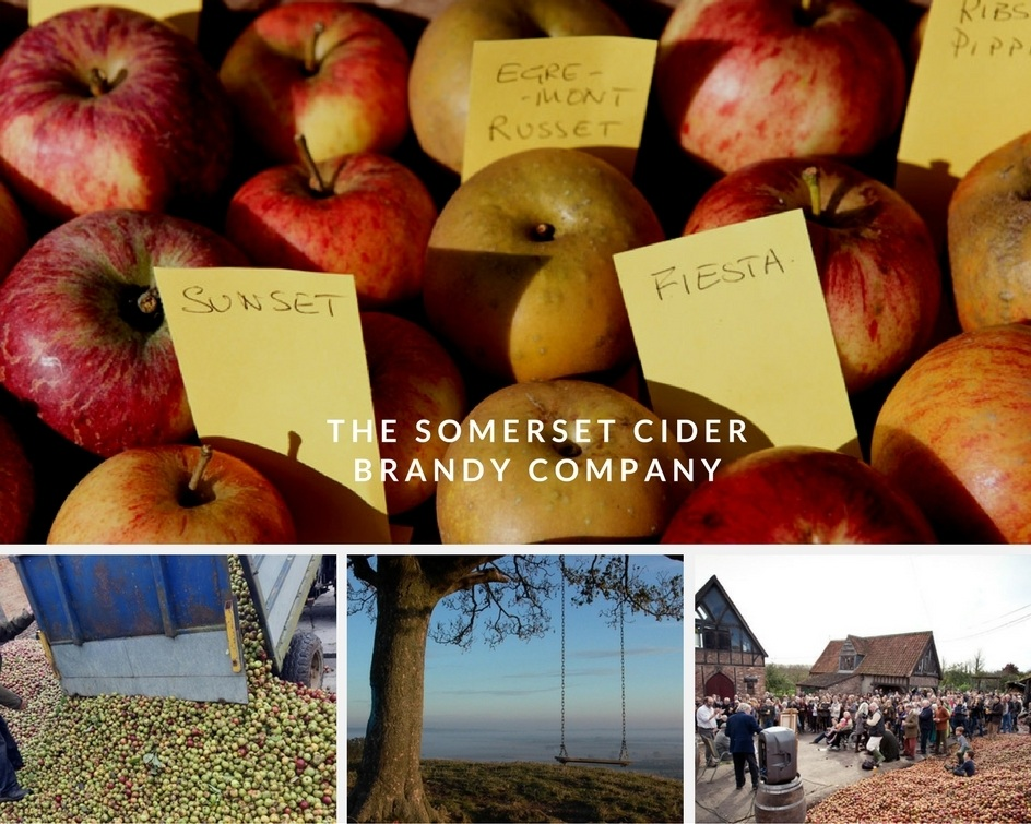 Somerset Cider Company Apples in October Holidays