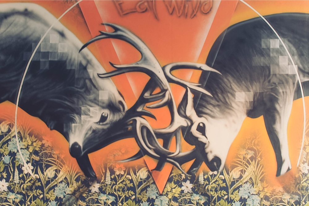 WILD-WEEKEND-CIRENCESTER_6562