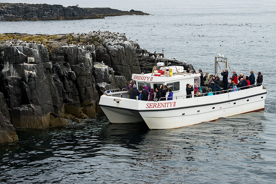 Serenity farne islands boat trip landing on island