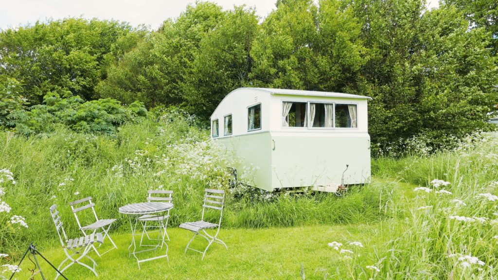 Mad Dogs glamping in the Forest of Dean - Sybil Van