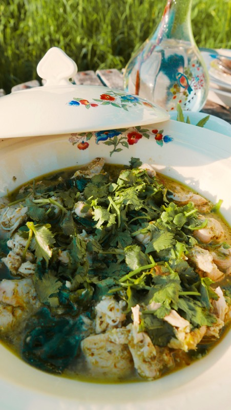 Mad Dogs glamping in the Forest of Dean - Close up of Thai Green Curry