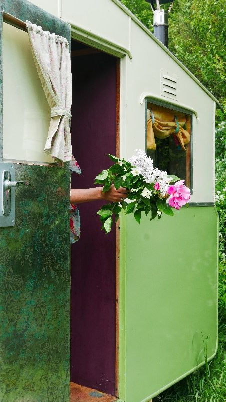 Mad Dogs glamping in the Forest of Dean - Roses in Sybil Van