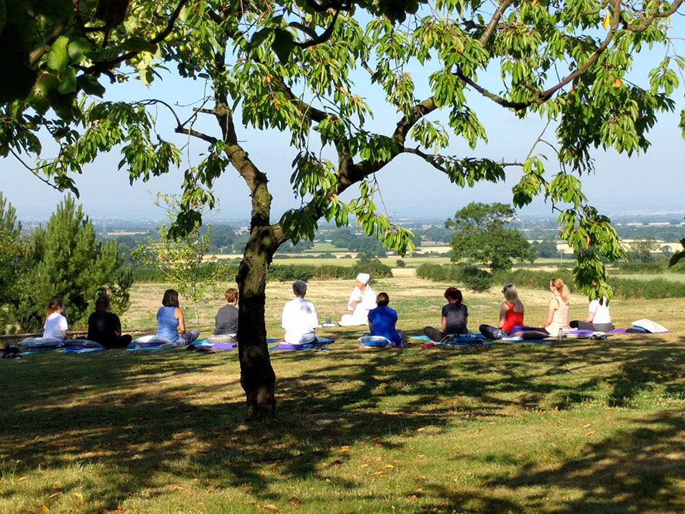 people doing yoga outside in sunshine