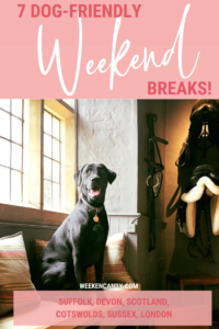 dog-friendly weekend breaks PINNABLE IMAGE