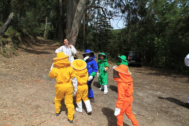 joana botto's beekeeping experience - with school childrens