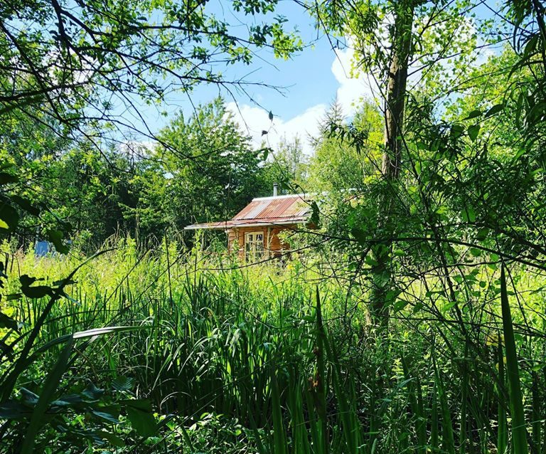 Albion Nights log cabin in norwich, norfolk - view across the meadow