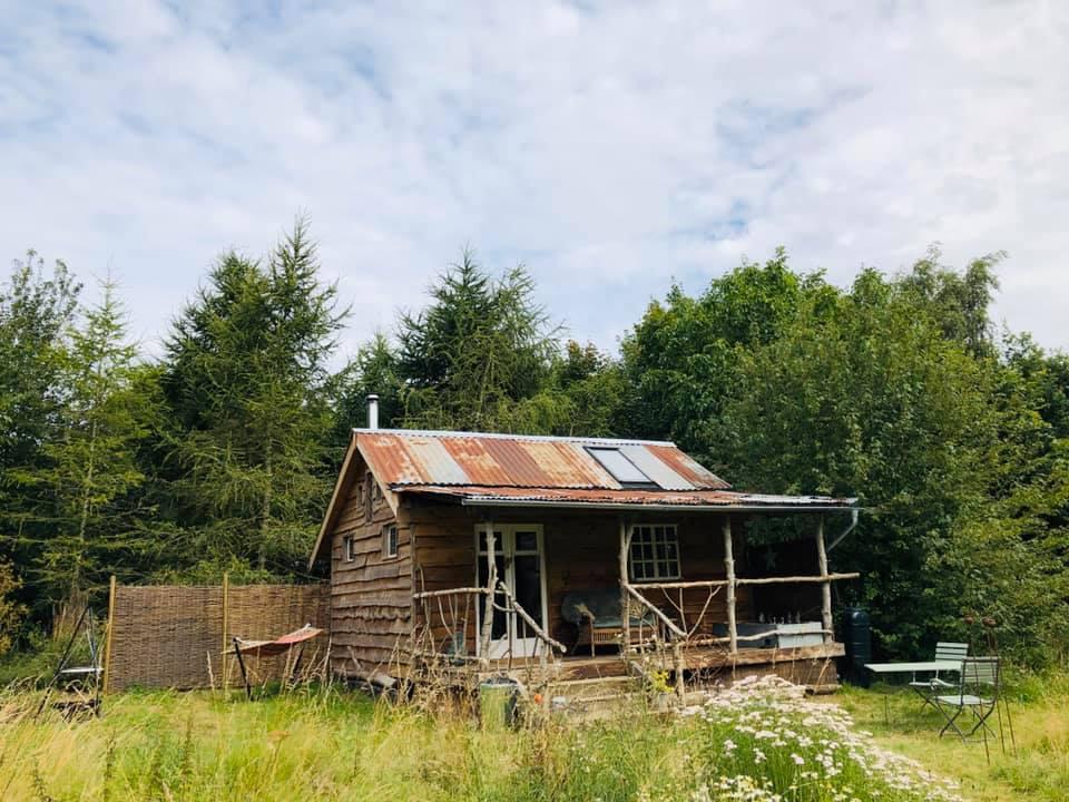 Albion Nights log cabin in norwich, norfolk - outside