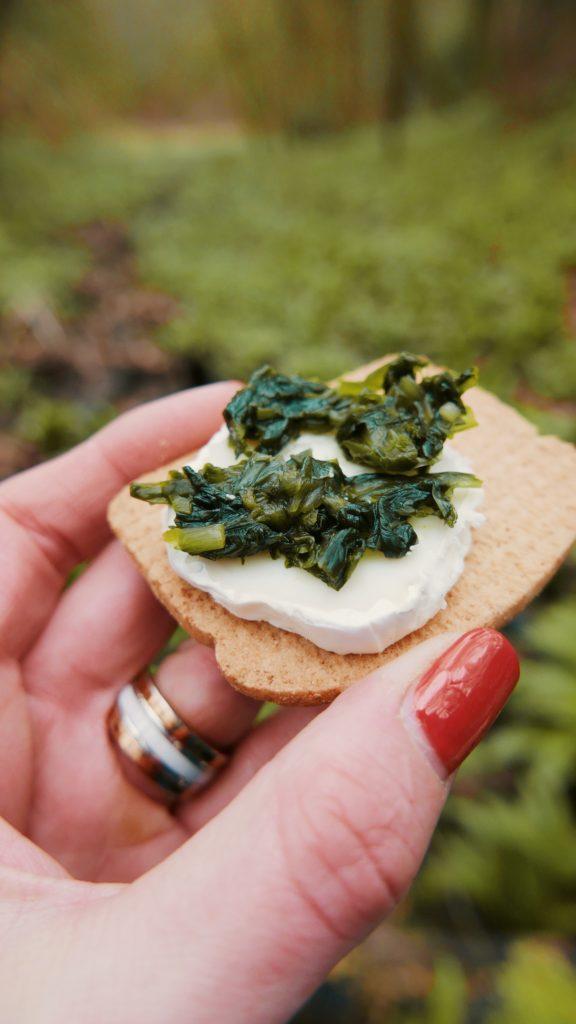 Foraging in Cheltenham with Cotswold Forager - wild garlic