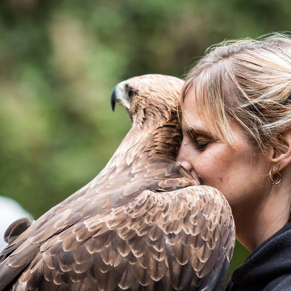 Walks with Hawks, Cheltenham - owner Clare with Eagle
