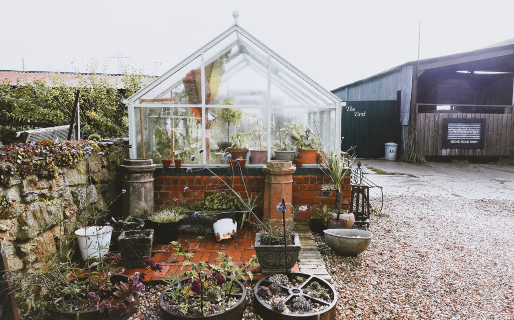 greenhouse at the Outbuildings self-catering studios in Dorset