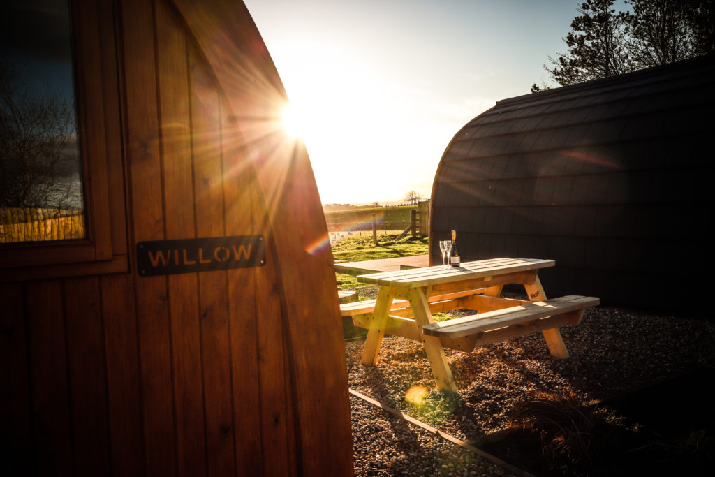 Sycamore glamping pods northumberland - exterior view willow