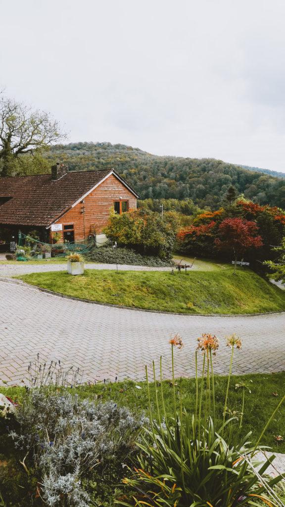 Parva Vineyard in the Wye Valley