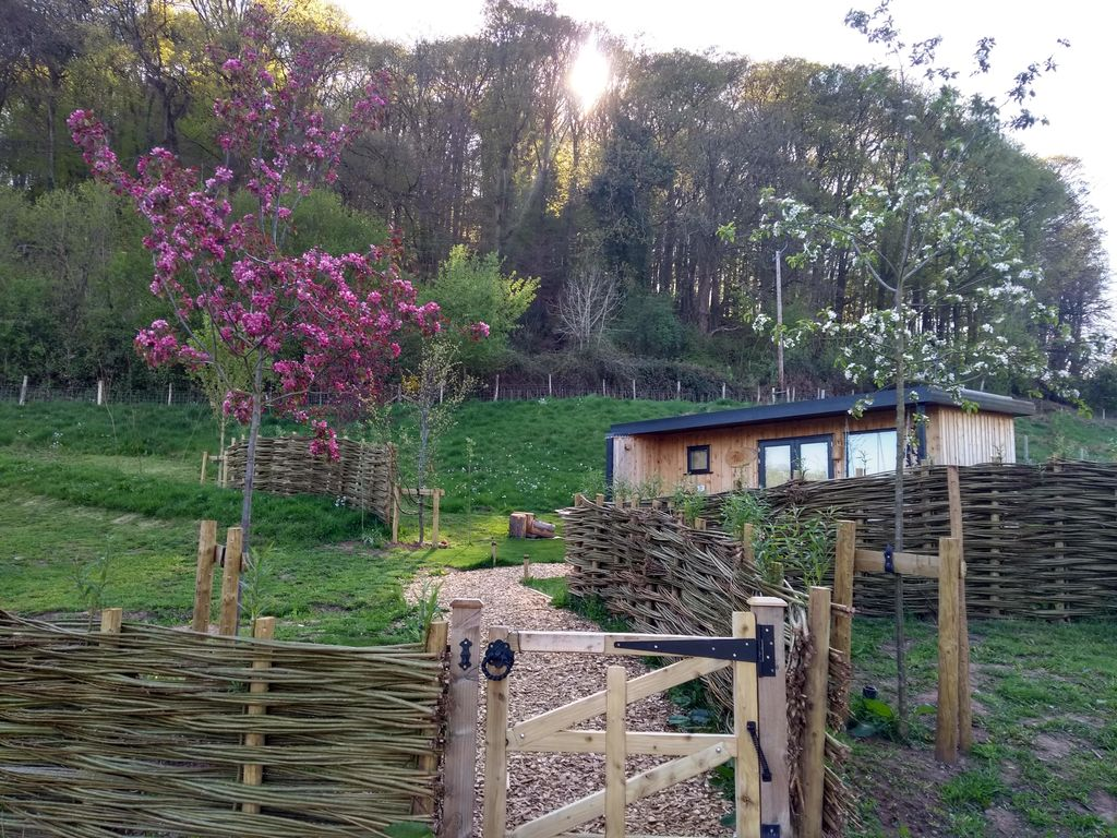 Forest of Dean Cabins at The Roost Glamping: the exterior