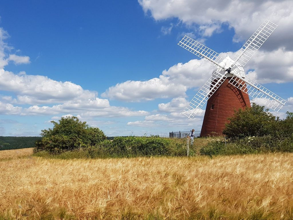 Halnaker-Windmill-1