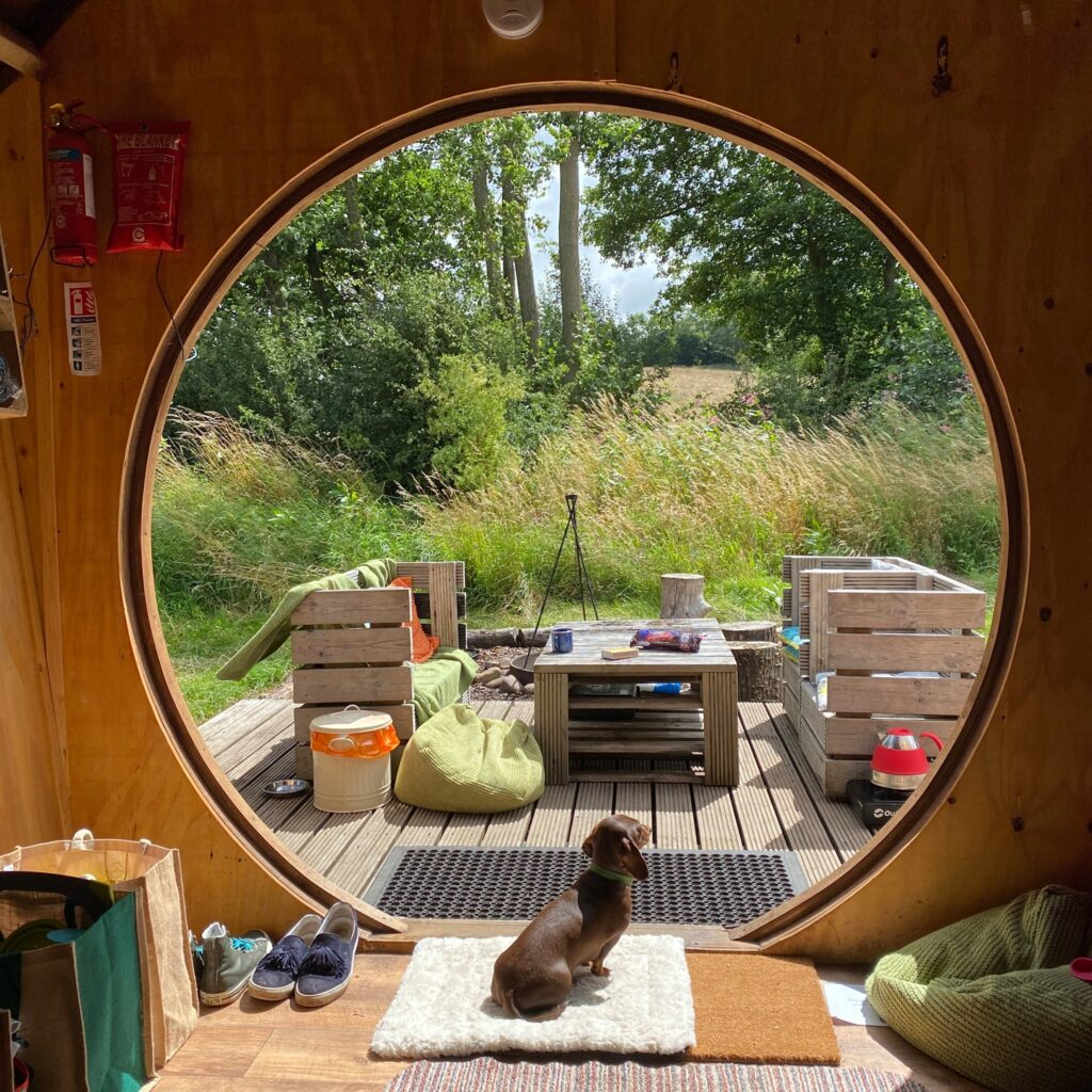 camping near york - hobbit house from inside with dog