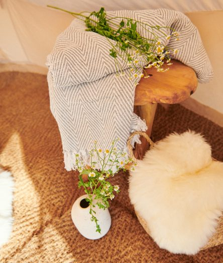 cornish-retreat-cabilla bell tent flowers