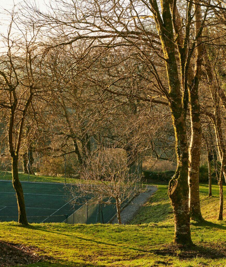 cornish-retreat-cabilla woodland