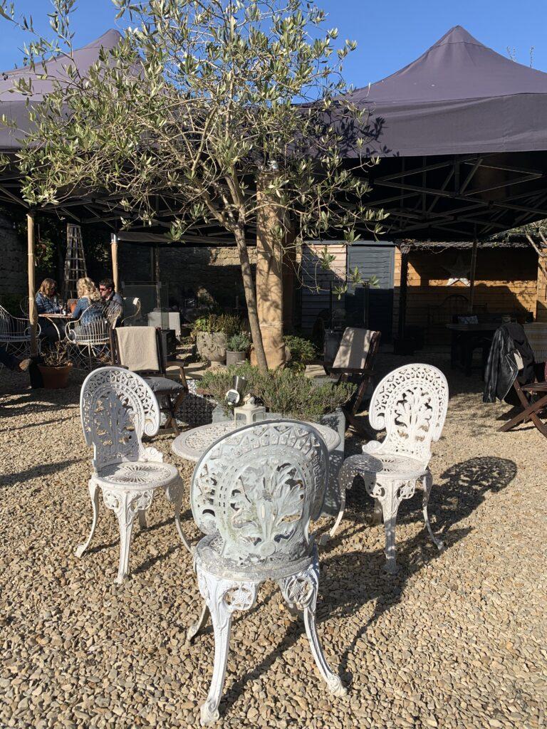 dark-bear-bridport-potting-shed: garden
